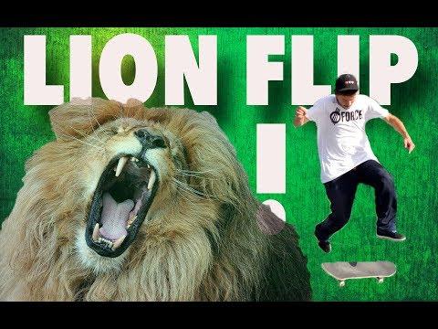 Lion Flip