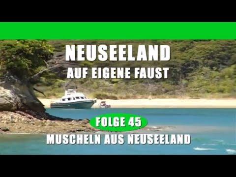 Folge 45 - Muscheln aus Neuseeland - Neuseeland auf eigene Faust