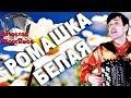 РОМАШКА БЕЛАЯ под баян поет Вячеслав Абросимов mp3