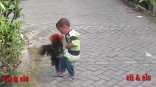 funny videos :  the kid will make you laugh so hard when the rooster kick him