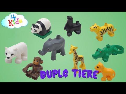 Lego Duplo Tiere Mit Ihren Namen Und Tiergeräuschen Lernen Für Kinder Und Kleinkinder