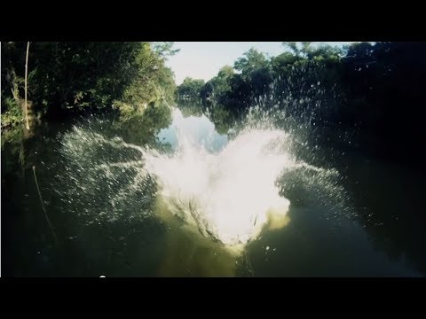 GoPro hero HD2-  HUGE TREE JUMP SLOW MOTION twixtor