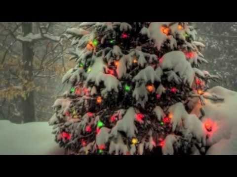 A Christmas Musical Festival - Boston Pops Orchestra! (ALBUM)