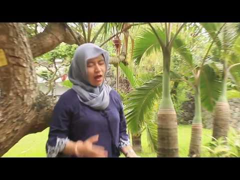 Nattaya - Indonesia Gemilang