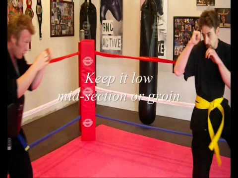 CLOSE QUARTERS COMBAT SANSHOU Push kick Image 1