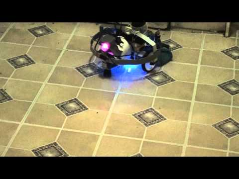 Robotic Wet Floor Mopper and Cleaner vs Kittens