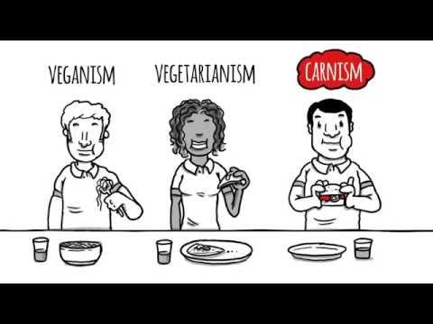 ВСЕМИРНЫЙ ОБМАН! Скрытые причины употребления мяса