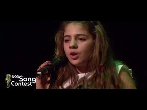 song contest gewinner lied