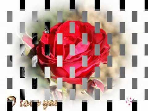 Ek Din Aap Yun Humko Mil Jayenge Maine Socha Na Tha***edit By Robin(roby)*** video