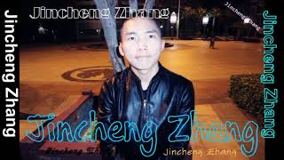 Jincheng Zhang - Children Story (Official Music Audio)