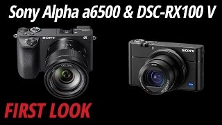 First Look: Sony | Alpha a6500 & DSC-RX100 V