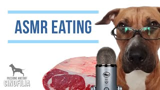 Il mio cane prova L'ASMR - ASMR EATING SOUNDS