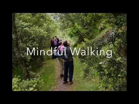 Alternatives, Walkinginspirit, Mindful Walking and Spiritual Development Retreat