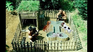 Download Lagu Build Mini Swimming Pool For Dogs And Build Bamboo Dogs House Gratis STAFABAND