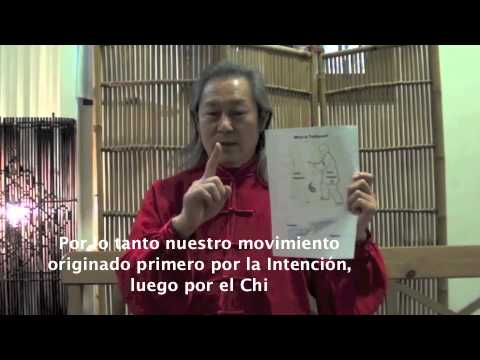 Que es el Tai Chi Chuan? Captulo I Image 1