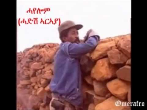 Foqhodo Shntro-ስዉኣት ህወሓት-tplf Tigray Martyrs video