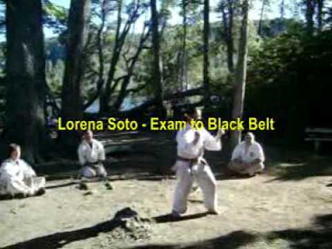 SHINSHINKAN ISSHIN RYU KARATE CAMP  FEB 2010 ( DEMO 1 / VIDEO  ) Image 1