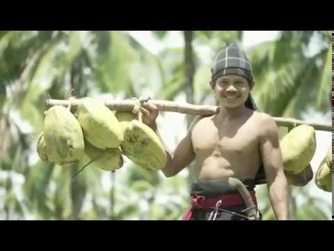 Produk Buah Kelapa, Kebanggaan Indonesia
