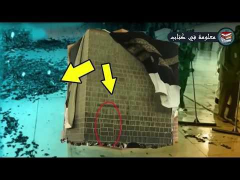 شاهد السبب المرعب لانتشار صراصير الليل في السعوديه... حقيقه زلزلت قلوب الملاين !!