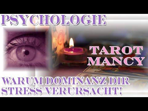 Dominanz in einer Beziehung: Warum Du lernen solltest, die Kontrolle abzugeben! Liebe Psychologie