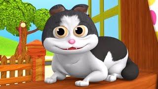 Meow Meow Billi Karti   Hindi Rhyme For Kids   म्याऊ म्याऊ   Balgeet In Hindi   LittleTreehouse