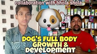 All about puppy or dog's full body growth and development | Collaboration with Bhola Shola |