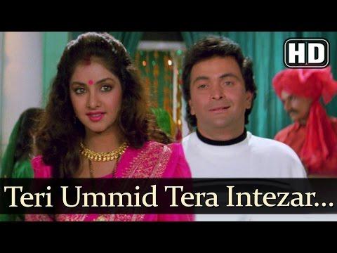 Teri Ummid Tera Intezar (HD) [Short Song] - Deewana Song - Rishi Kapoor - Divya Bharti