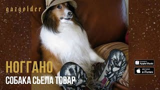 Ноггано - Собака съела товар