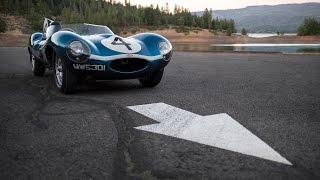 Jaguar D-Type: 24 Hours Of Le Mans Champion