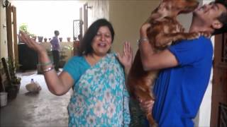 Surprise waali Diwali
