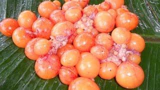 Cooking Unlaid Chicken Eggs Fry In My Village Farm - Food Money Food - Amazing Taste