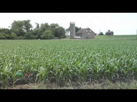 Starter Fertilizer #699 (Air Date 8/28/11)