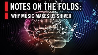 How Music Affects Your Brain: Notes on the Folds