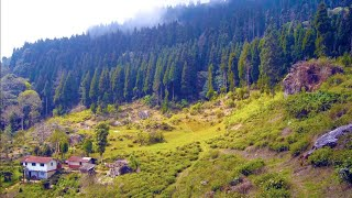 Tinchuley ◎ Takdah ◎ Lamahatta, Darjeeling ↑ Travel Guide 9
