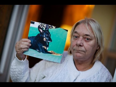 'I gave my dog lung cancer': Cigarette-puffing grandmother says passive smoking was to blame