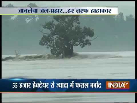 Assam Flood: Around 1400 Villages Get Affected, NDRF Starts Rescue Operation - India TV