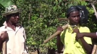 MOVE ZANMI Haitian Movies Full