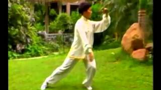 """ Do Your TAIJI with My BEAUTIFUL Music "".......  a Traditional Taiji Quan 24 Form !"
