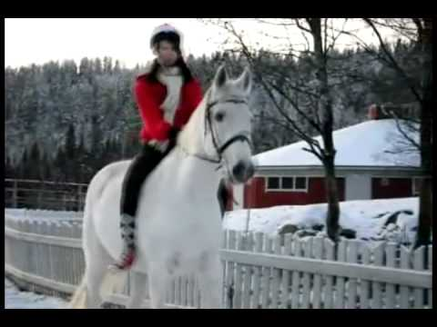 Winter Horse Riding