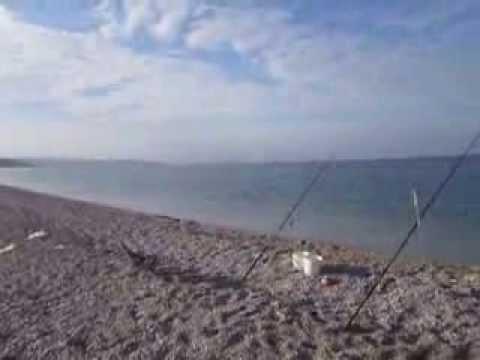 ловля кефали в крыму с берега