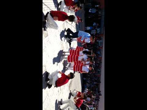 Penguen dansı Doğubeyazıt Gazi ilkokulu 4 B sınıfı 23 nisan gösterisi