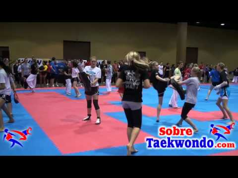 Taekwondo. Fast kick technique Image 1