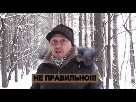 Как гулять со щенком зимой