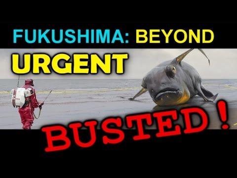 Fukushima: BEYOND URGENT... BUSTED!