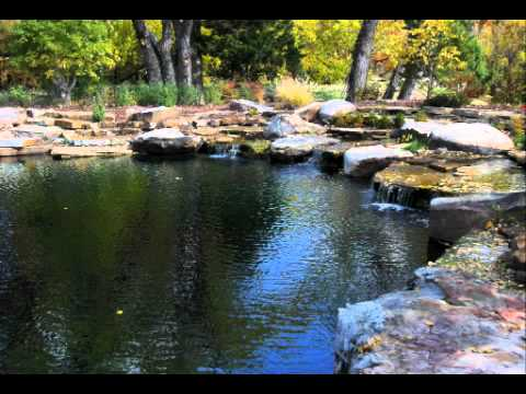 Natural swimming pools ponds about youtube for Pond swimming pool