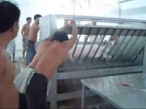 hog dehairing machine
