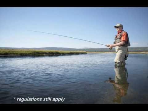 Rep. David Maturen reminds you about Free Fishing Weekend.