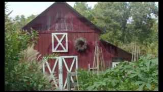 Watch Bebo Norman Selwood Farm video