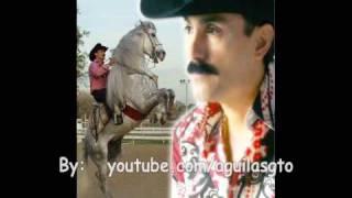 Vídeo 43 de El Chapo De Sinaloa