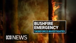 Sunshine Coast fire storm still burning out of control as police investigate cause | ABC News